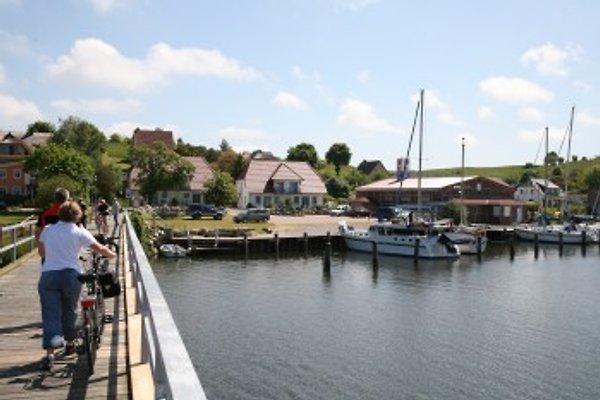 Am Yachthafen - Seedorf Rügen in Sellin - immagine 1