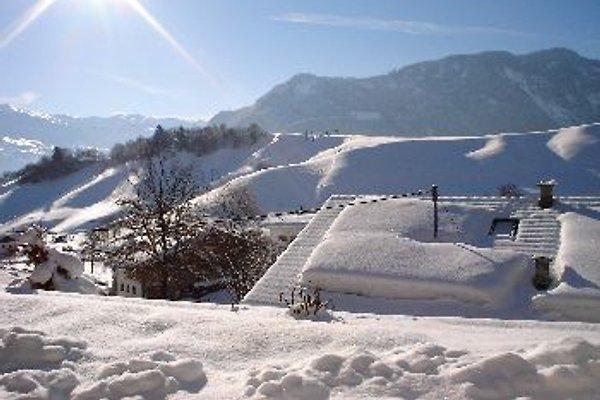 Top - Ferienwohnung in Tirol in Wiesing - Bild 1