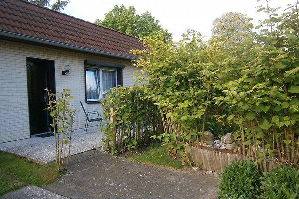 Ferienhaus auf Rügen en Dranske - imágen 1
