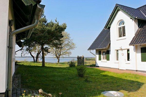 Haus Wasserblick in Quilitz - immagine 1