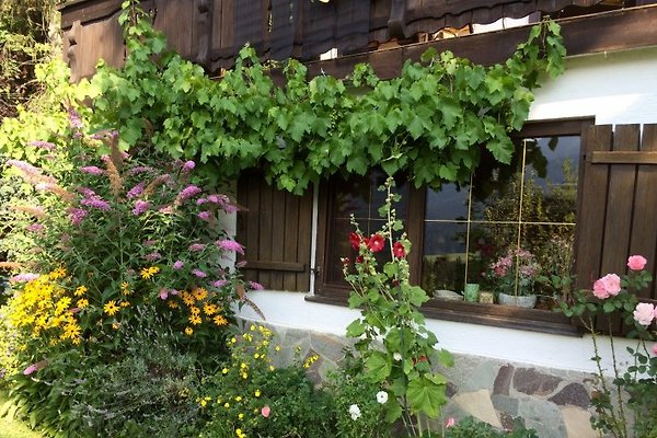 Home Chris in Scheffau - picture 1