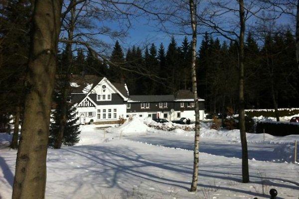 Haus am Walde / Schneider *** in Winterberg - immagine 1