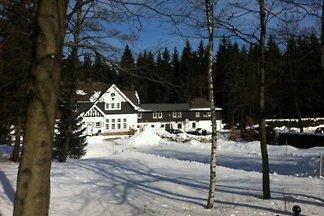 Haus am Walde / Schneider ***