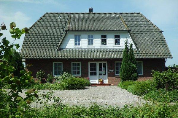 Ferienhaus Eckeberg
