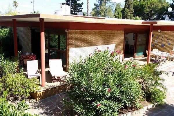 Residencia Europea  à Sagunto - Image 1