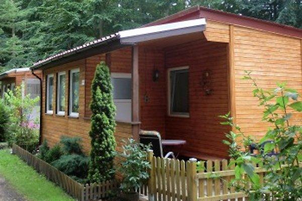 Bungalow / Ferienhaus in Graal-Müritz - immagine 1