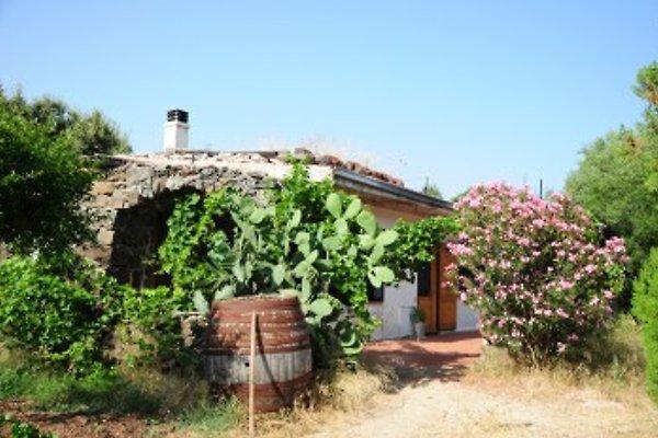Cottage Casa Maria à Dorgali - Image 1