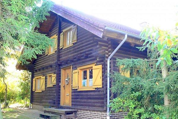 Bio Blockhaus in Bad Harzburg - Bild 1