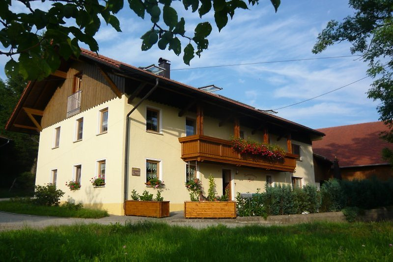 Ferienhof Rita Hierl in Neukirchen beim Heiligen Blut - immagine 2