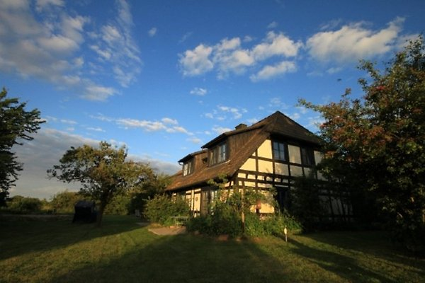 Maison de vacances à Warthe - Image 1