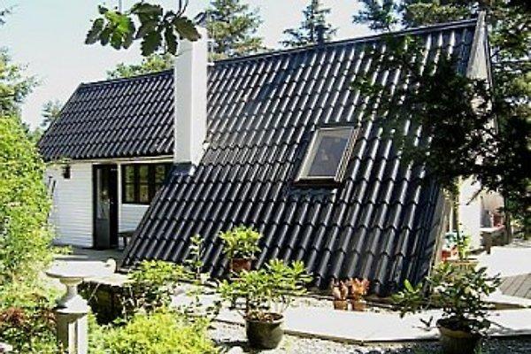 Ferienhaus in Dänemark à Overby Lyng - Image 1
