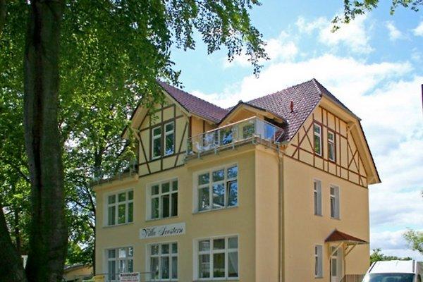 Villa Seestern  in Heringsdorf - Bild 1