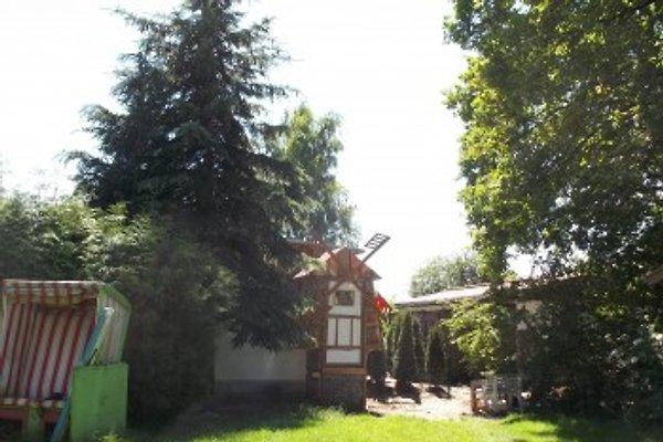 Zwergenmühlenspeicher à Zinnowitz - Image 1