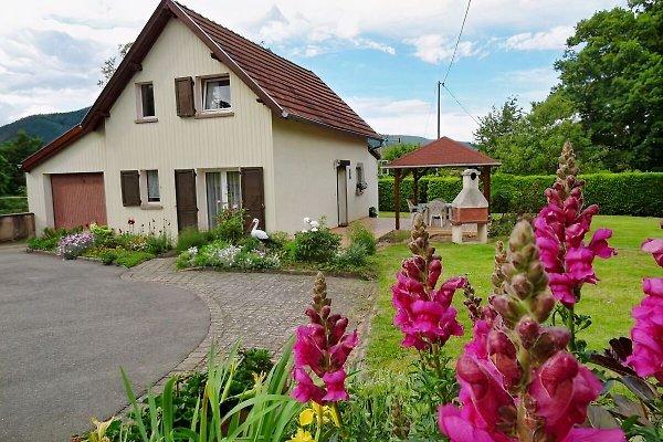 Ferienhaus Elisa 3*** in Niederhaslach - Afbeelding 1