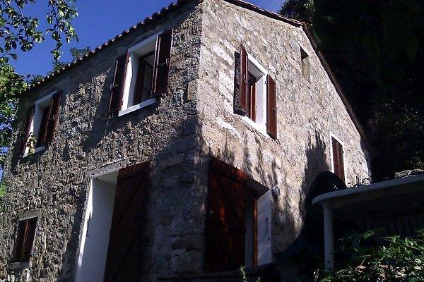 Corsica, Zicavo. Haus mit Garten in Zicavo - Bild 1