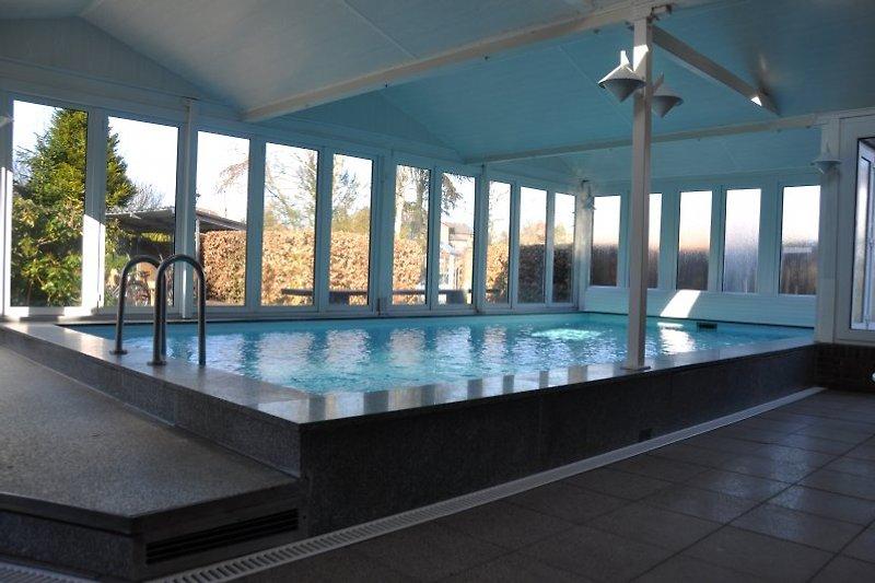 Das hauseigene Schwimmbad mit 28 Grad Wassertemperatur