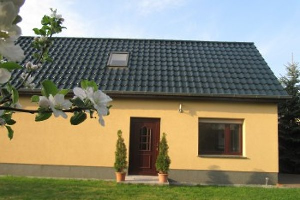 Holiday house with terrace in Crinitz - picture 1