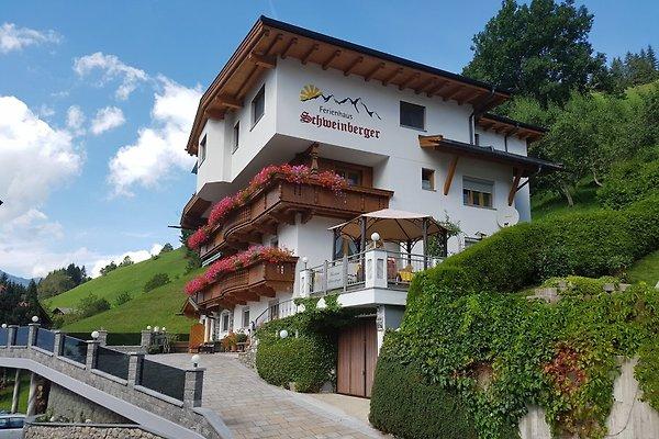 Ferienhaus Schweinberger - Sommer