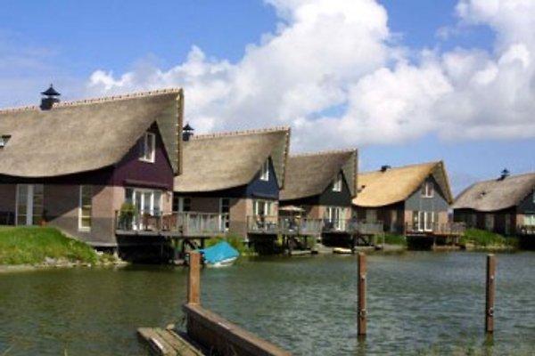 Fischervilla am Ijsselmeer à Makkum - Image 1