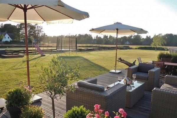 Terrasse hinten auf der Wiese