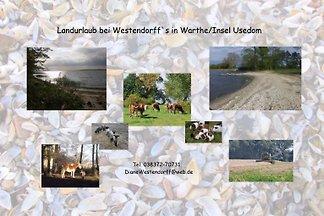 Landurlaub bei Westendorff`s Warthe
