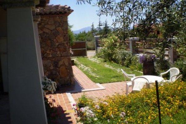 San Gemiliano: Domus Cerina. in Arbatax - immagine 1