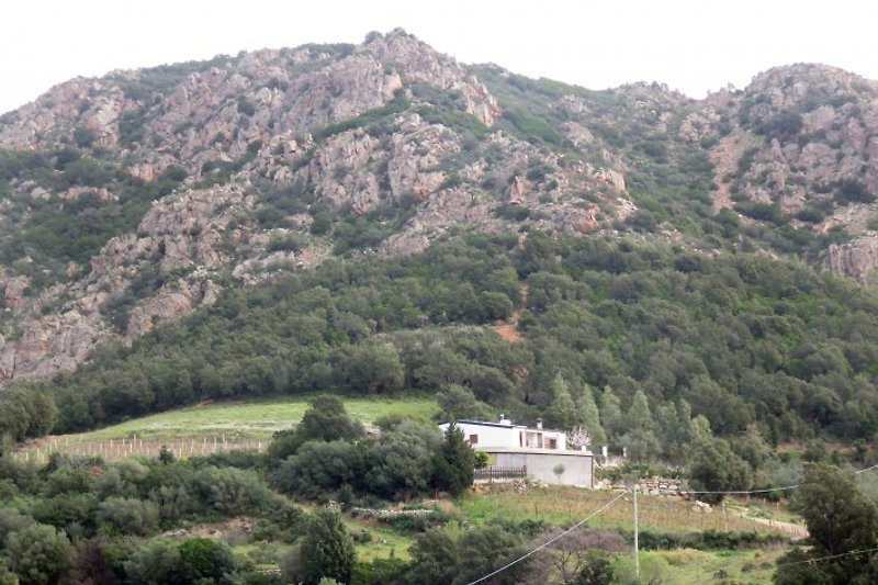 Unsere ruhigen gemütlichen Haus in der immergrünen mediterranen Macchia gelegen.