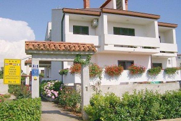 Villa Falcon Nr.05 / 3 Pers. in Funtana - Bild 1