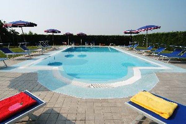 Der traumhafte Pool lädt zur Abkühlung ein..