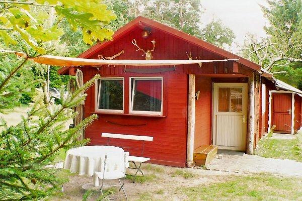 Ferienhaus in Mecklenburg à Zwenzow - Image 1