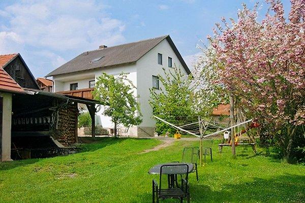 Ferien bei Fuchs in Langenloh - Bild 1
