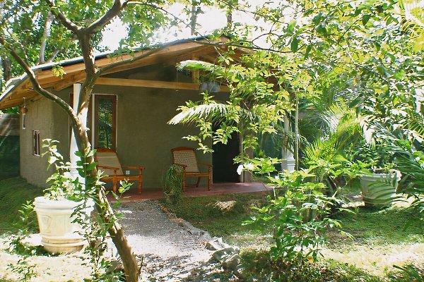 cabana der villa sunshine ahangama pension in ahangama mieten. Black Bedroom Furniture Sets. Home Design Ideas