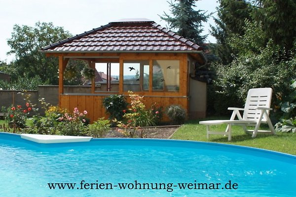 Pool / Außenanlage