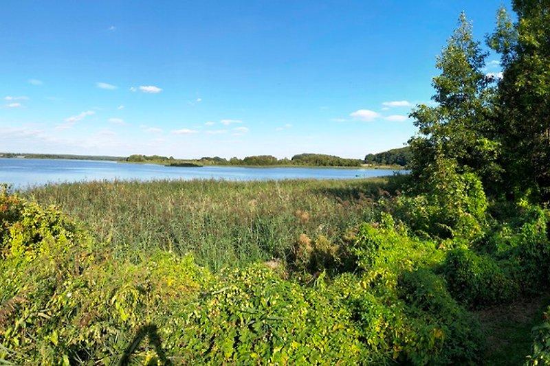 Blick zum See, September 2018