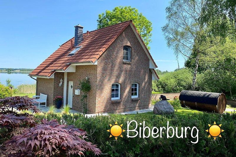 Biberburg Juni 2021
