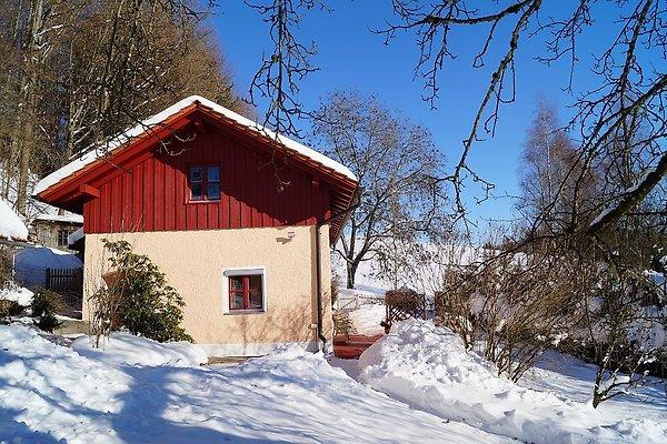 Exclusives Ferienhaus Natur  in Röhrnbach - immagine 1