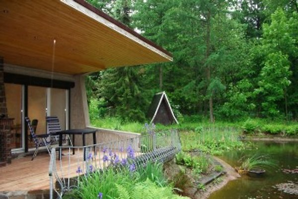 Bungalow with pool  in Frauwalde - picture 1