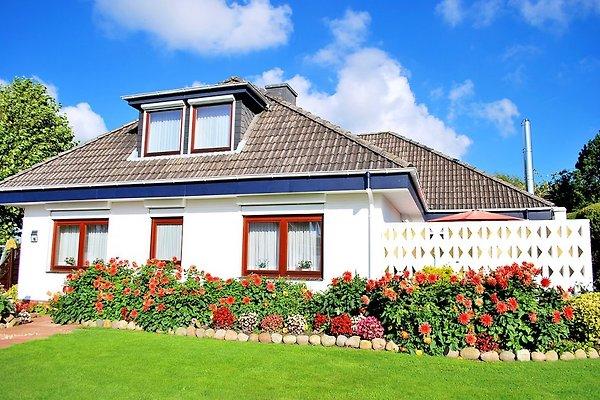 Haus Lüdtke Büsum Fewo 1 (37m˛ à Büsum - Image 1