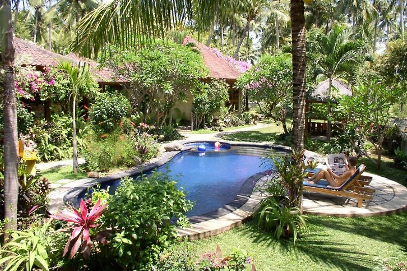 swimming pool in lush tropical garden