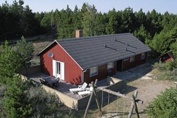 rřmř in Rømø - immagine 1