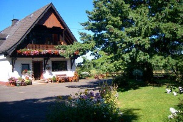 Herzfennerhof in Auw - immagine 1