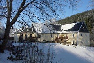 Weidenhäuser Mühle Wohnung 3