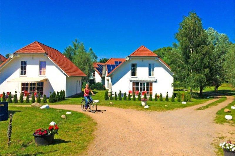 Ferienhäuser Kummerower See à Verchen - Image 2