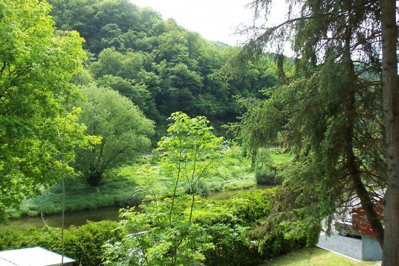 Wasserblick vom Grundstück aus