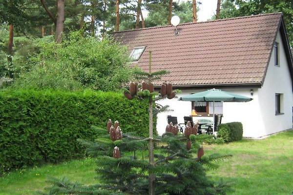 Ferienhaus Weststrand in Wieck - immagine 1