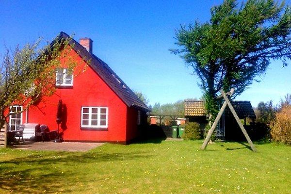 Slette Haus in Fjerritslev - immagine 1