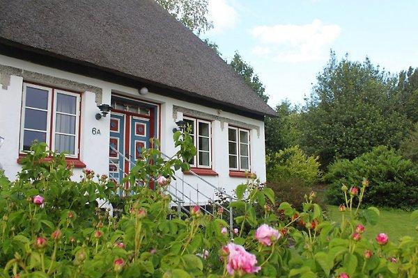 Maison de vacances à Nordborg - Image 1