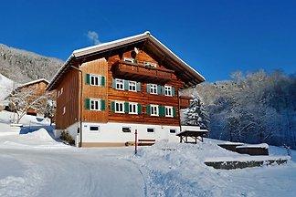 Haus Silke,Silbertal FW2
