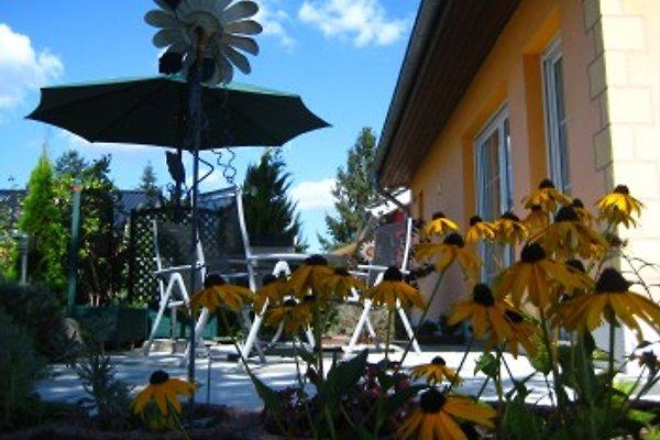 Ferienhaus Anett in Neeberg in Krummin - Bild 1