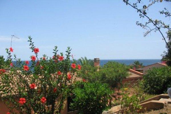 Silapipa nur 70 mt zum Meer en Porto Corallo -  1